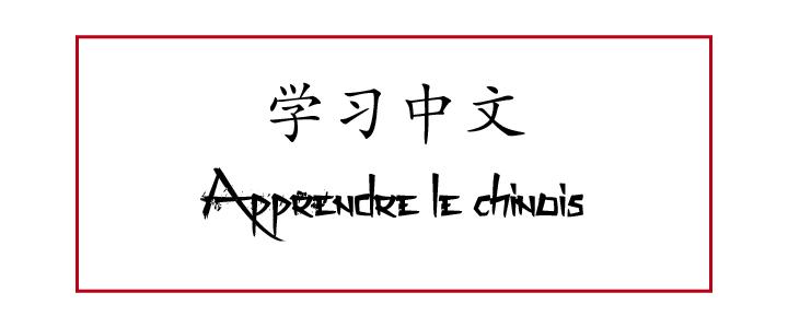 apprendre-la-chine-en-apprenant-sa-langue